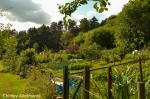 Image: Chinley Allotments